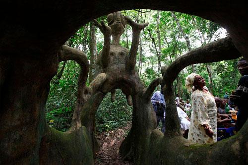 Bosque De Oshun