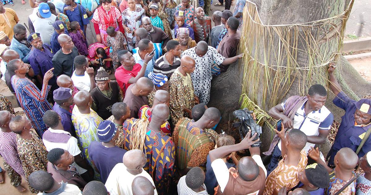 Fundamentos de la práctica de Ifá Tradicional